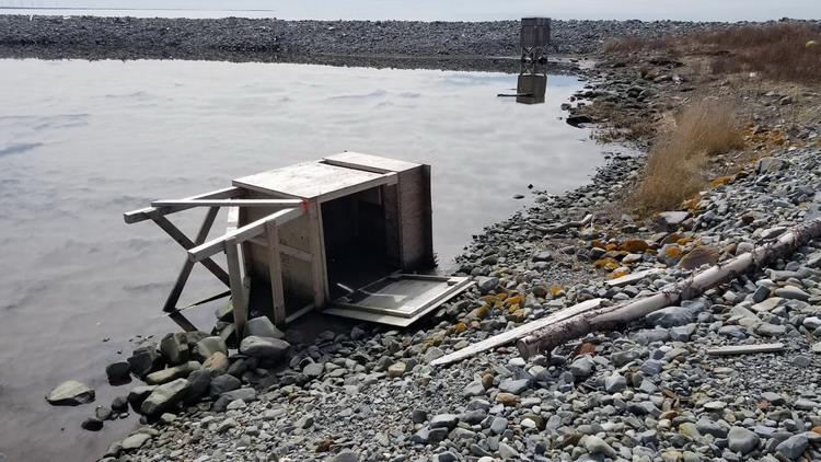 Gull Island, Lobster Bay, NS, March 29, 2020 - Alix d'Entremont photo