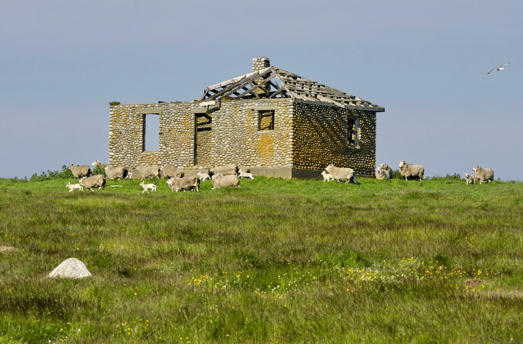 The stone house on Outer Bald Tusket Island, June 29, 2014 - Ted D'Eon photo