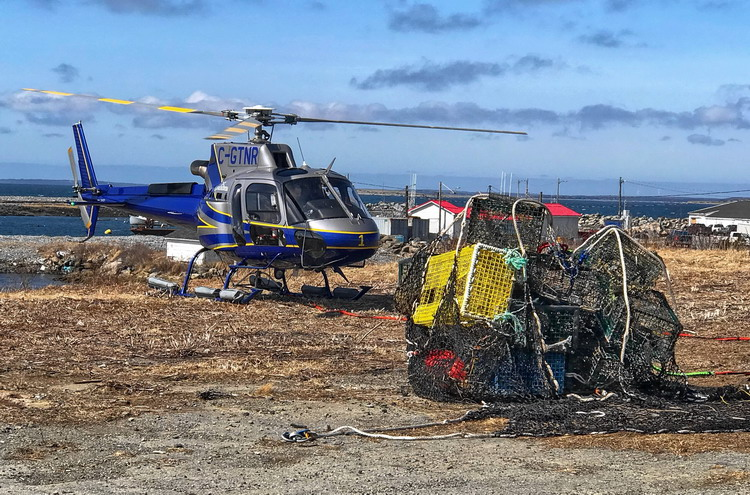 The Gull Island Cleanup - Abbott's Harbour, NS, March 29, 2019 - Ted D'Eon photo