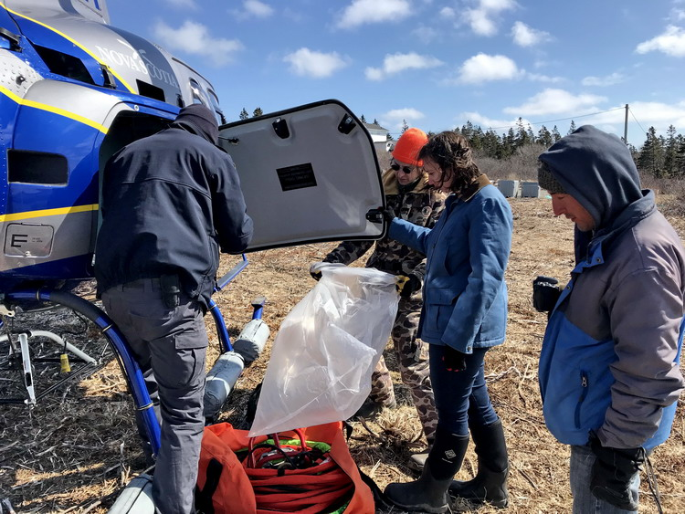 The Gull Island Cleanup with Nigel, Missie, and Alix - Abbott's Harbour, NS, March 29, 2019 - Ted D'Eon photo