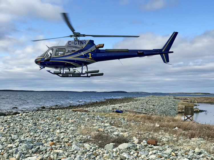 The helicopter - Gull Island - April 25, 2019 - Ted D'Eon photo