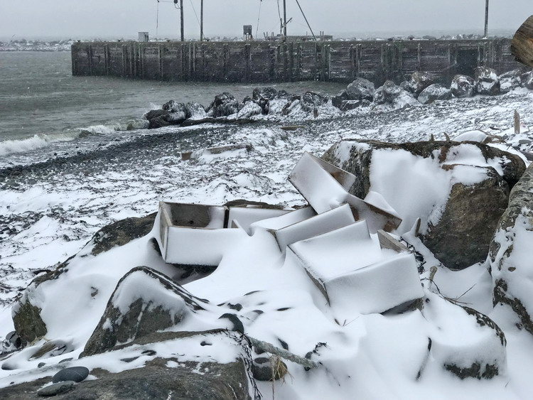 ROST shelters at Ledge Harbour, Middle West Pubnico, January 6, 2018 - Ted D'Eon photo
