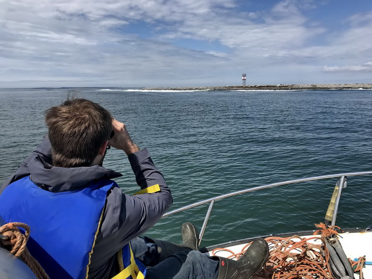 Nick Knutson checking out Gull Island, April 29, 2018 - Ted D'Eon photo