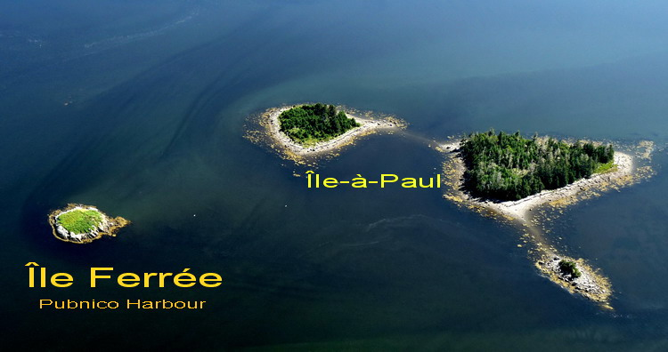 Île Ferrée, Pubnico Harbour - Ted D'Eon photo