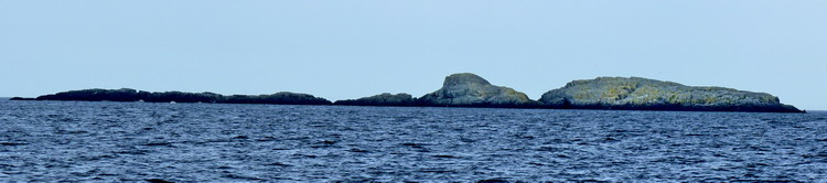Gannet Rock, Nova Scotia, as seen from the east - June 2, 2012 - Ted D'Eon photo
