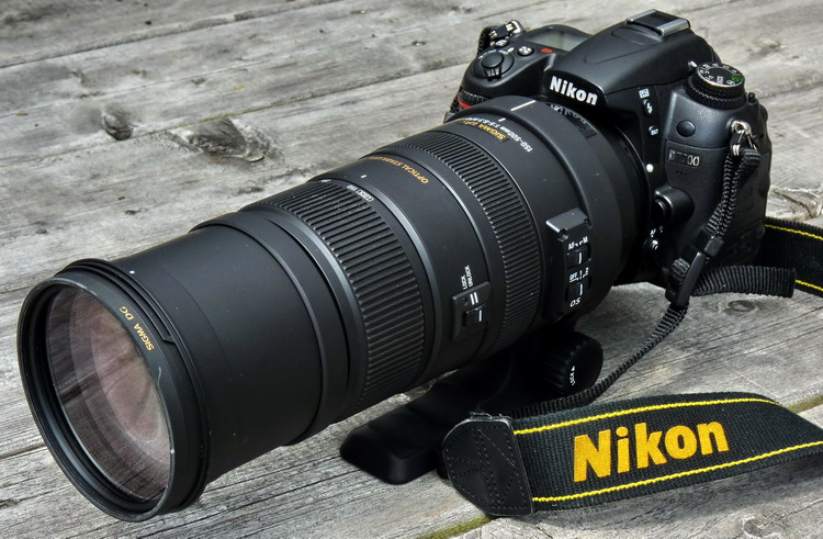 Nikon D7000 with Sigma 150-500mm F5-6.3 lens - Ted D'Eon photo