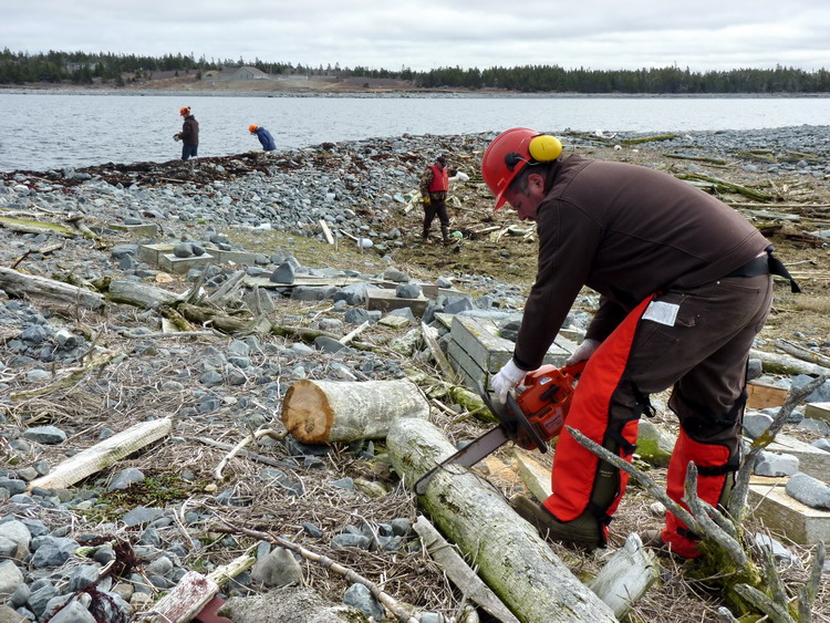 DNR cleanup - N. Brother, Apr. 30, 2015 - Ted D'Eon photo