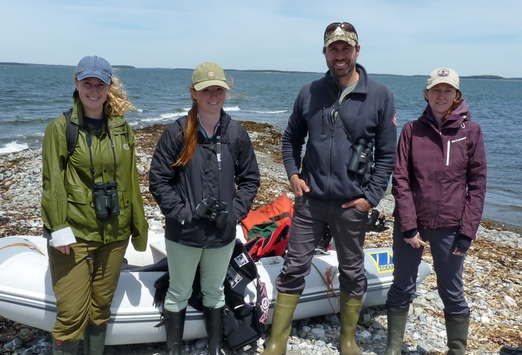The crew: Natalie, Manon, Shawn, and Julie - Gull Island, May 30, 2018 - Ted D'Eon photo