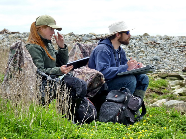 Manon and Nick observing the tern colony - Gull Island, June 6, 2018 - Ted D'Eon photo