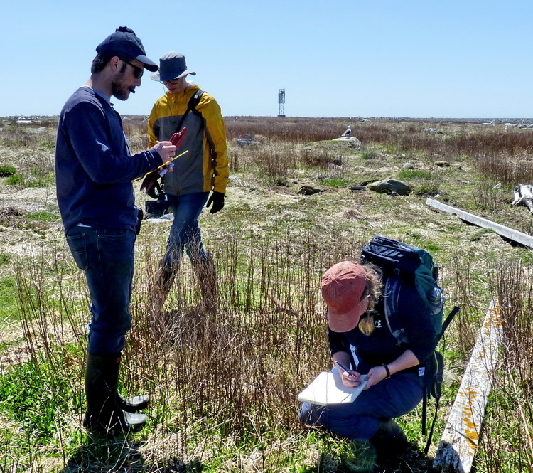 The crew documenting a COEI nest - Gull Island - May 7, 2019 - Ted D'Eon photo