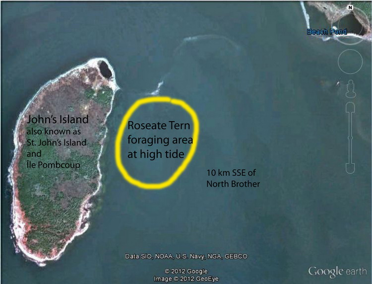 St. John's Island foraging area, 10 km SSE of N. Brother - Google Earth photo