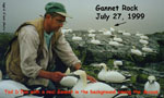 Ted with Gannet and Decoys on Gannet Rock, Nova Scotia - Ingrid D'Eon photo - July 27, 1999